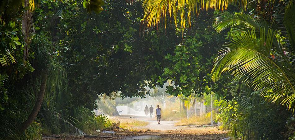 Staytravelling Aveyla Dharavandhoo Island