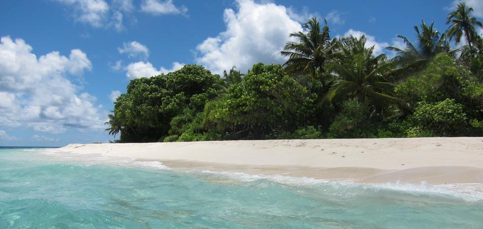 Staytravelling Baa Atoll Beach Dharavandhoo