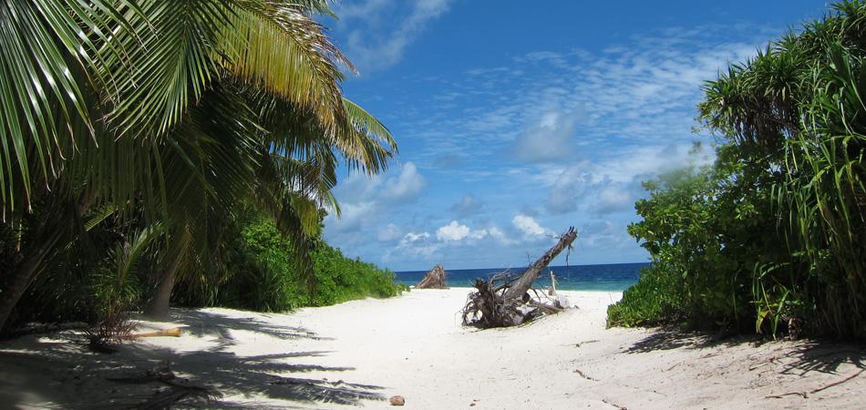 Staytravelling Baa Atoll Dharavandhoo Maldives