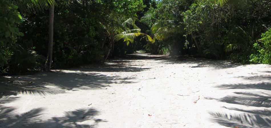 Staytravelling Baa Atoll Dharavandoo Local Island