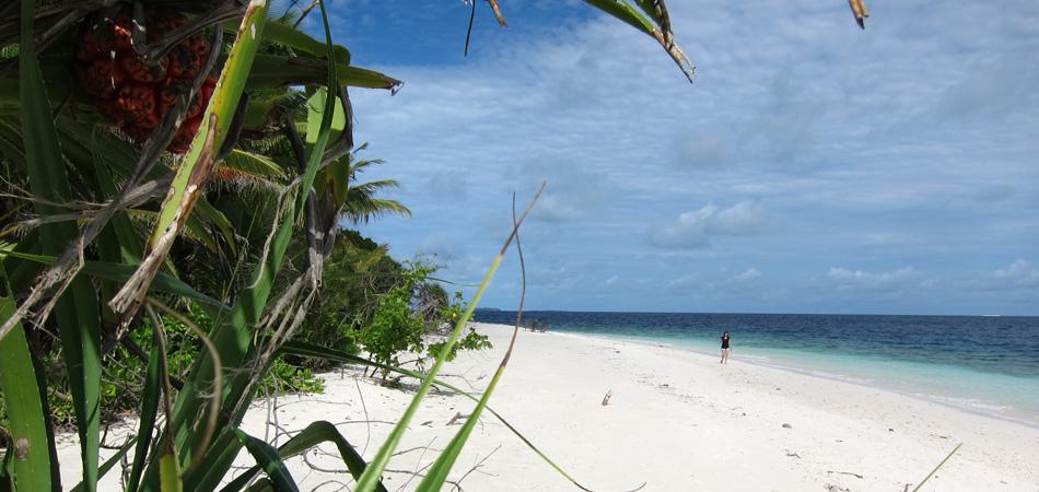 Staytravelling Baa Atoll Naturstrand