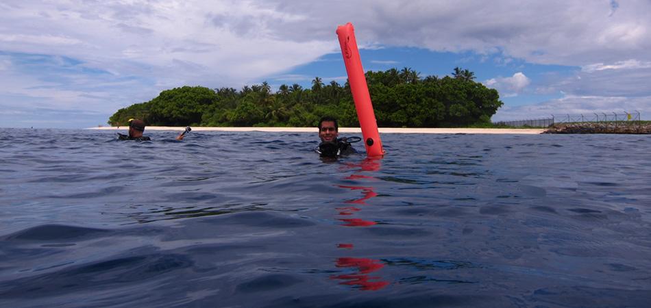 Staytravelling Baa Atoll Tauchen
