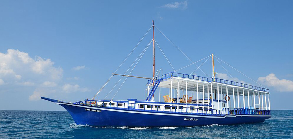 Staytravelling Gulfaam Cruise Maldives