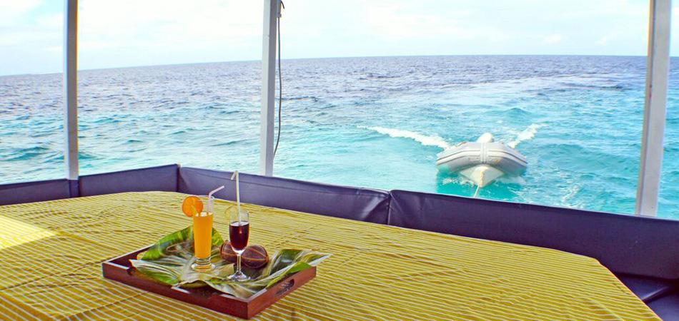 Staytravelling Koimala Malediven Schnorcheln