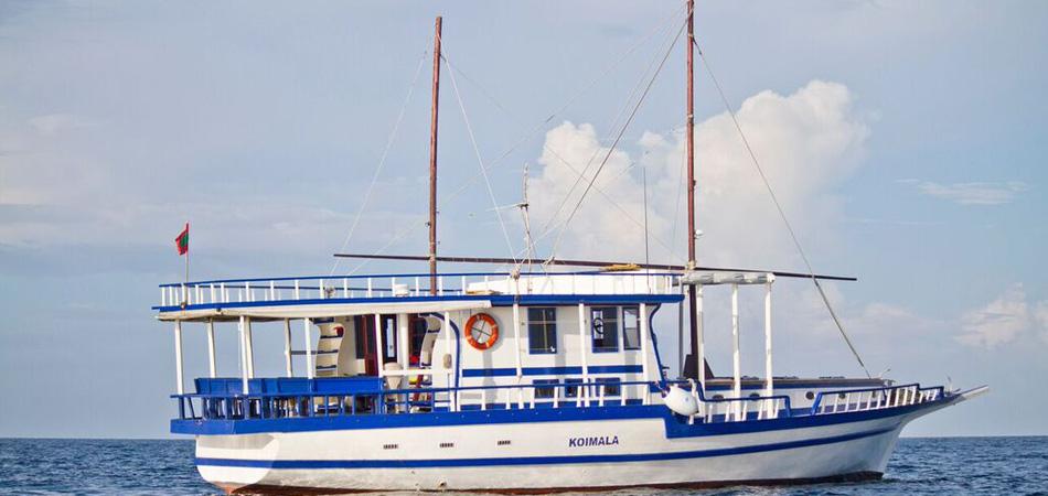 Staytravelling Koimala Malediven