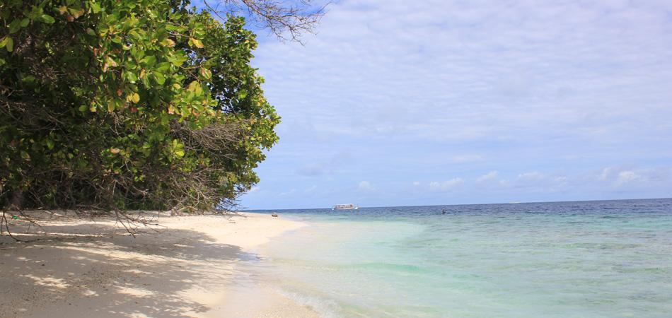 Staytravelling Maldives Dharavandhoo Island