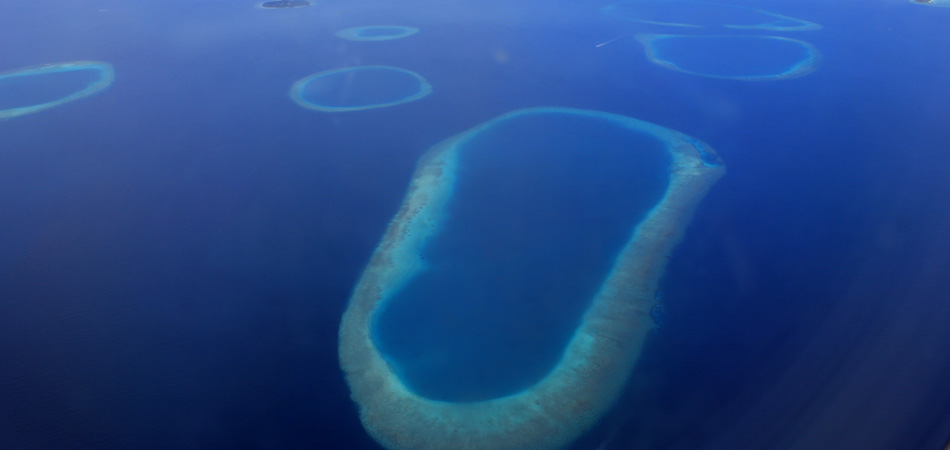 Staytravelling Maldives Flug