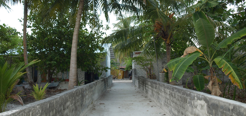 Staytravelling Malediven Dhigurah Local Island Holiday