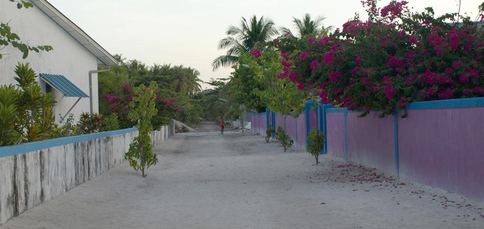 Staytravelling Malediven Dhigurah Village