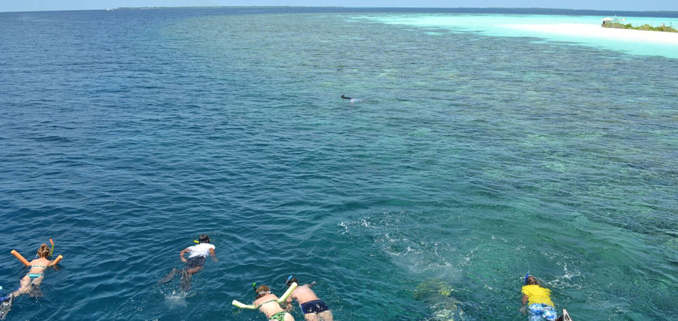 Staytravelling Malediven Schnorchelreise