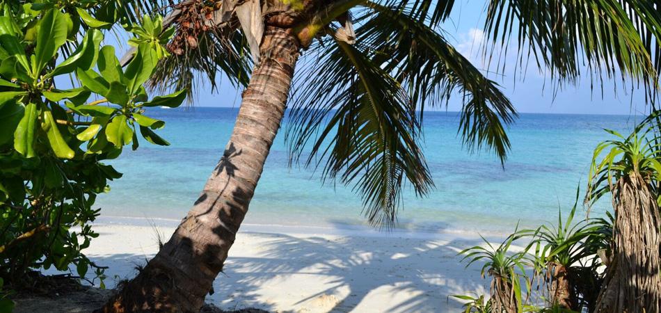 Staytravelling Malediven Urlaub Local Island Dhigurah