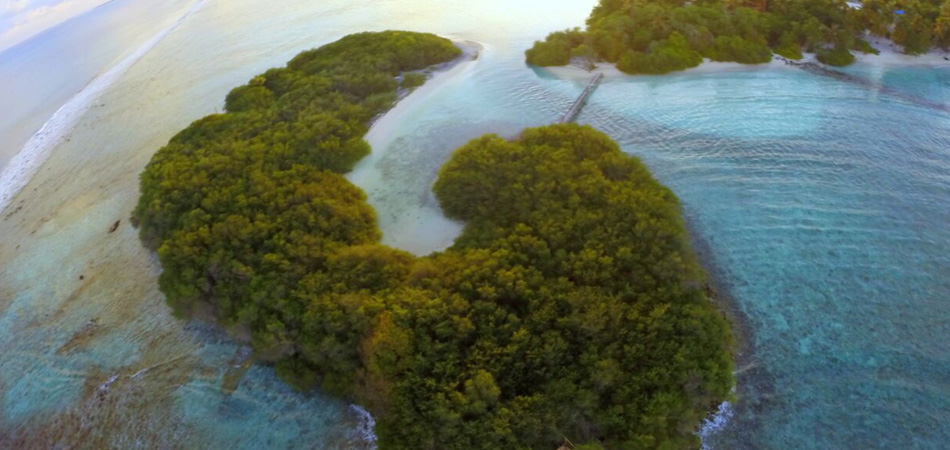 Staytravelling Malediven Thulusdhoo Surfen
