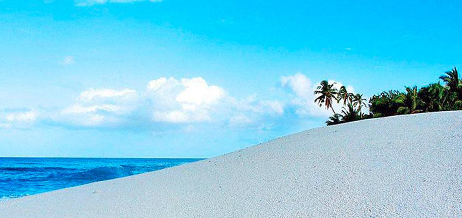 Staytravelling Malediven Tigerhaie Fuvamulah