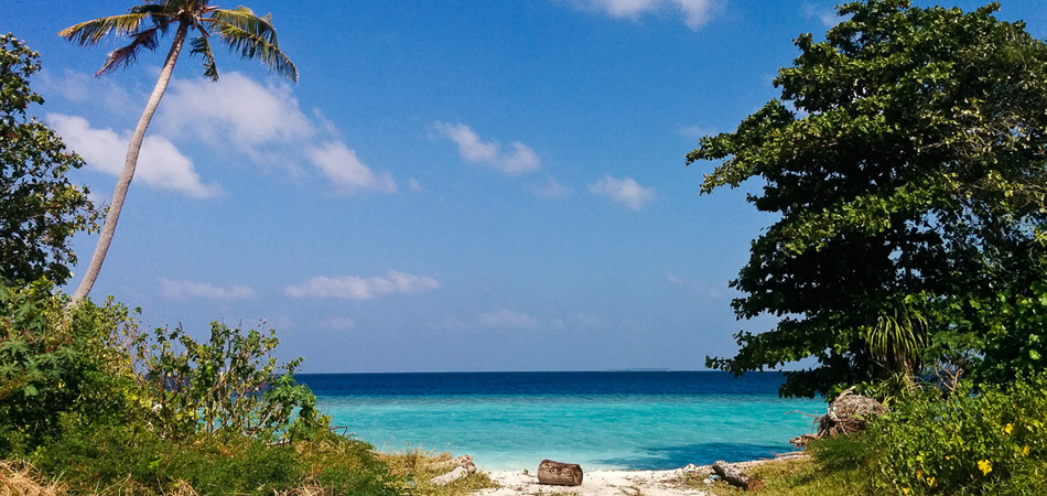 Staytravelling Baa Atoll Local Island Diving