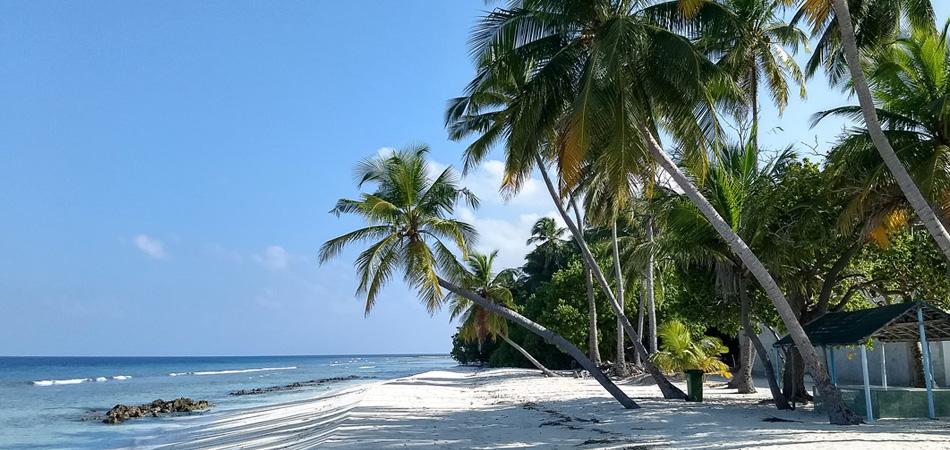 Staytravelling Baa Atoll Maalhos Tauchurlaub