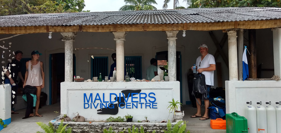 Staytravelling Local Island Diving