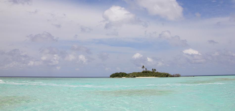 Staytravelling Malediven Rasdhoo Madivaru Island