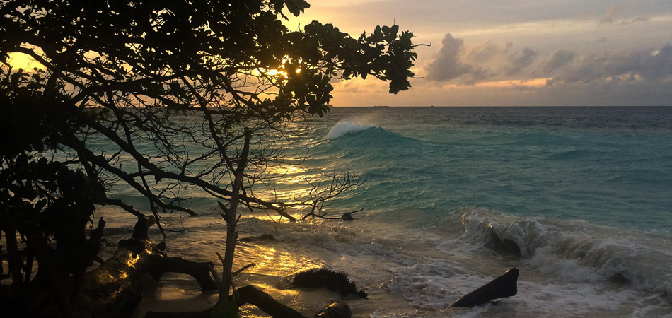 Staytravelling Malediven Tauchurlaub Baa Atoll