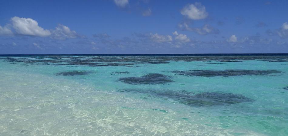 Staytravelling Malediven Schnorchelurlaub