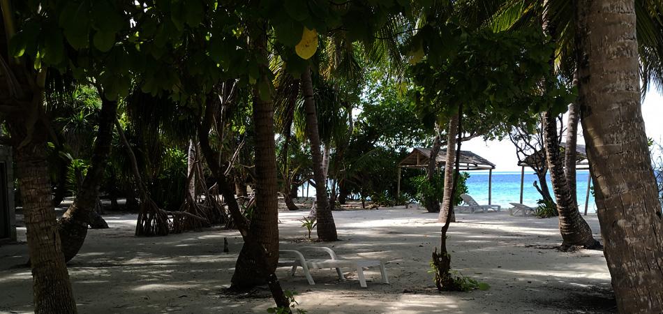 Staytravelling Schnorchelreise Malediven Thinadhoo