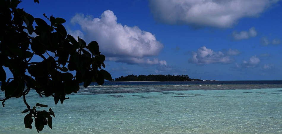 Staytravelling Thinadhoo Malediven All Inclusive Schnorchelreise