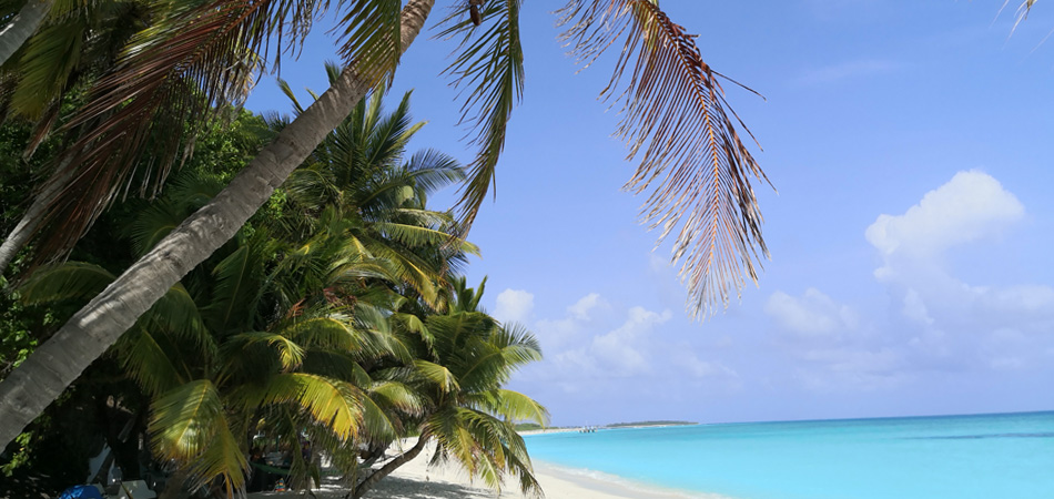 Staytravelling Beste Inseln Malediven