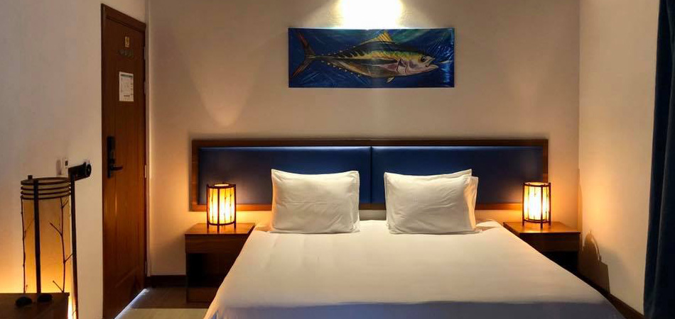 Staytravelling Malediven Guesthouse Holiday