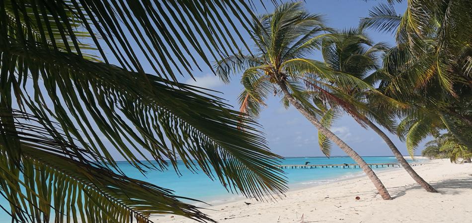 Staytravelling Malediven Vashafaru Aktivurlaub