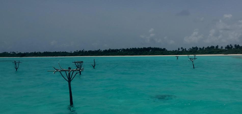 Staytravelling Malediven Stelzenfischen