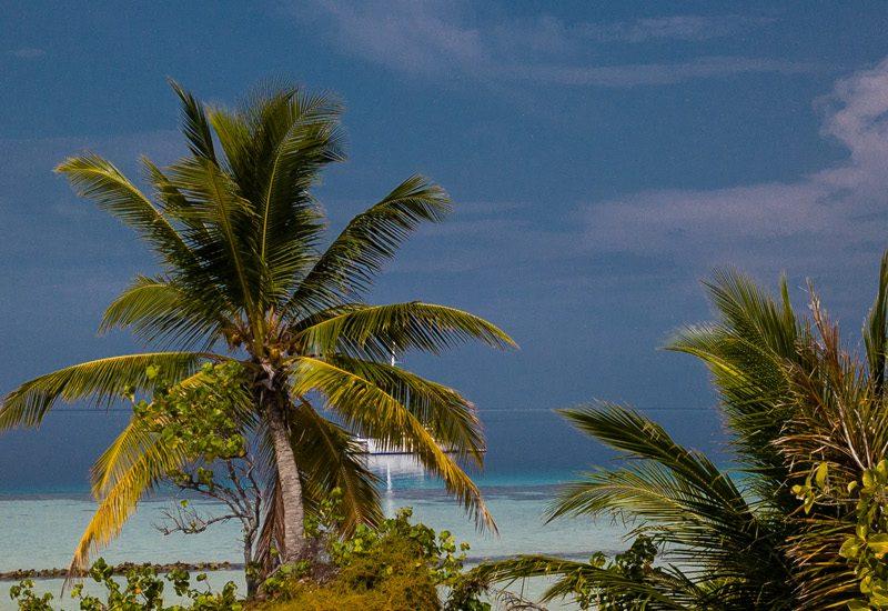 Staytravelling Malediven Katamaran Baa Atoll