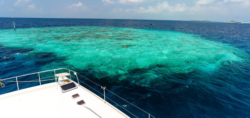 Staytravelling Malediven Schnorchelsafari