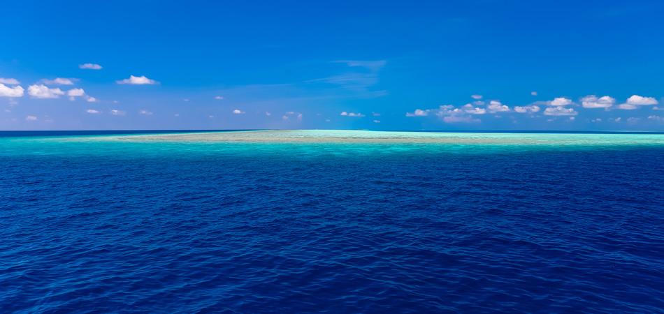 Staytravelling Malediven Schnorchelsafaris