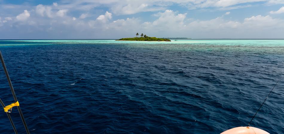 Staytravelling Maledivensafari Katamaran